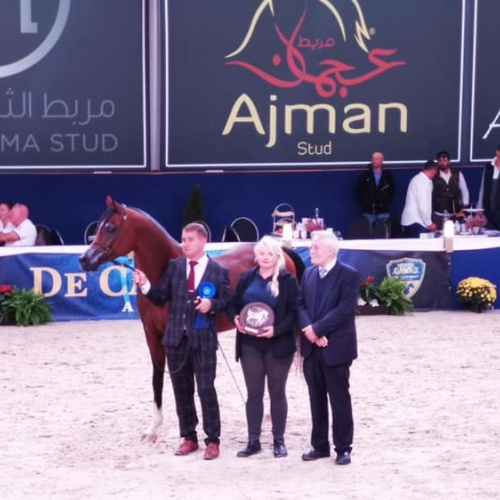 AMES JR - TOP FIVE in Aachen